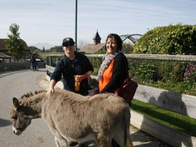Barrierefreie Freizeitgestaltung in Österreich und Bayern 13.07.2016